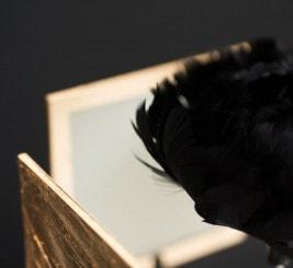 OLED luminaire Vittorino by Pugnale & Nyleve