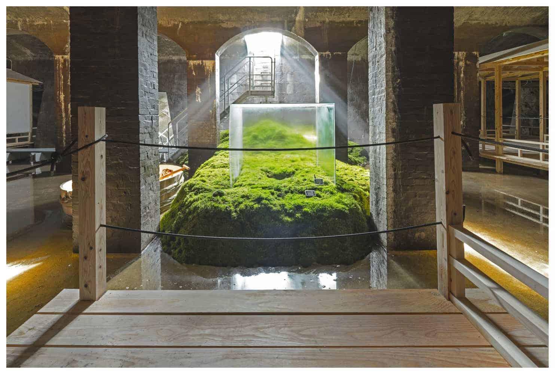 The Water, by Hiroshi Sambuichi | OLEDWorks