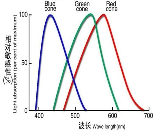 Light Absorption Rate
