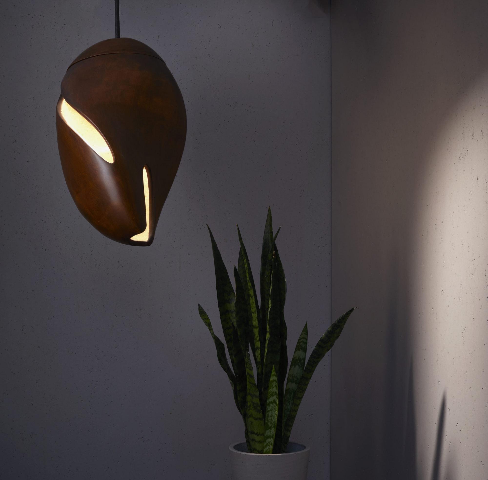 Cocoon OLED Fixture